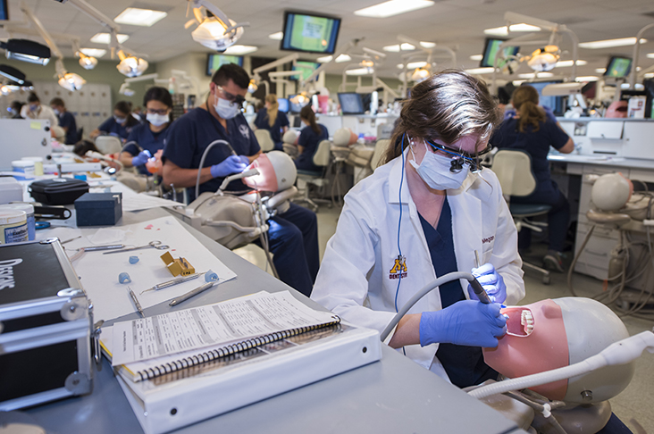 dental students training